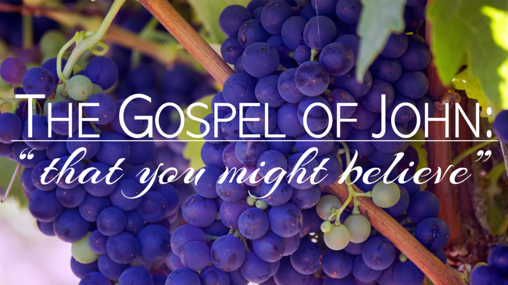 The Gospel of John: That You Might Believe
